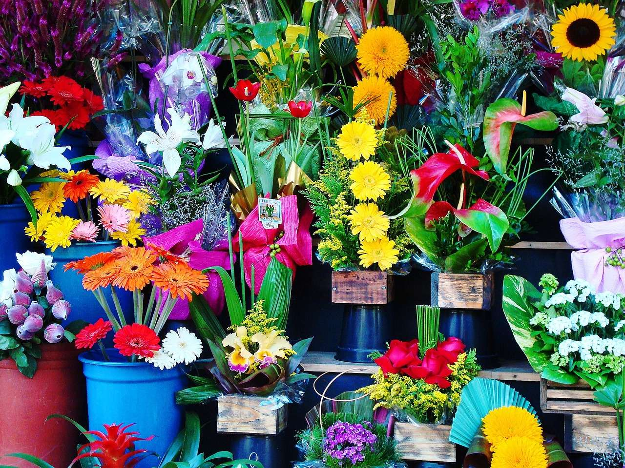 Flower Shop Franchises in the UK Are Ready to Blossom
