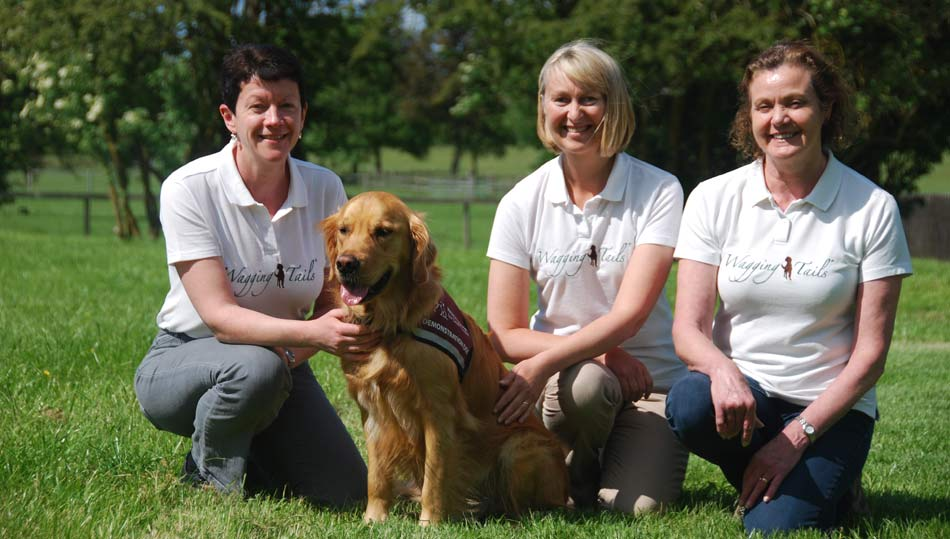 Wagging tails dog franchise