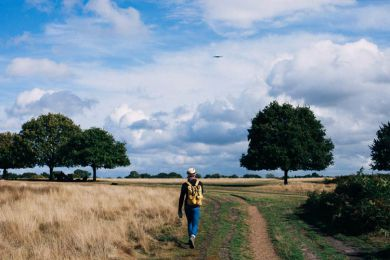 Top 4 Outdoor Franchises in the UK
