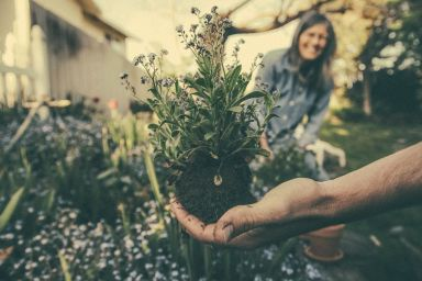 Gardening Business: Create Your Own with a Franchise