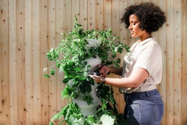5 Things to Know Before Starting a Gardening Franchise