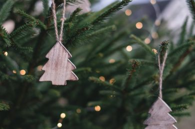 Give the Gift of Holiday Cheer with a Christmas Decorating Business