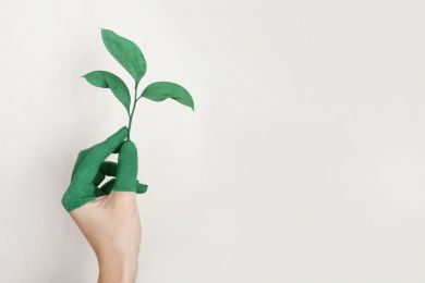 25 Sustainability Tips to Create a More Environmentally-Friendly Business