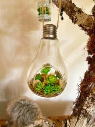 Franchisor Tips: Five Reasons to Make Your Franchise a More Sustainable Business