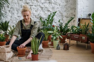 A Day in the Life: What It Takes to Run Your Own Gardening Franchise